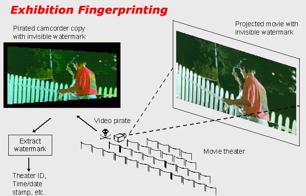 exhibition fingerprinting